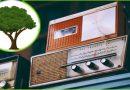 Zbiórka odpadów wielkogabarytowych – meble, duże AGD, RTV